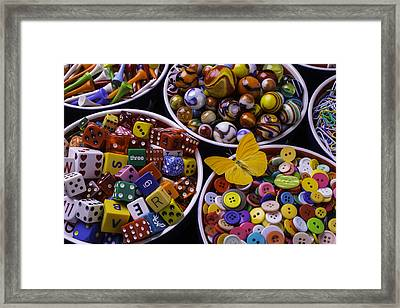 Butterfly With Bowls Framed Print by Garry Gay