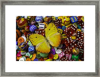 Butterfly With Marbles And Dice Framed Print by Garry Gay
