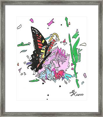Butterfly2010 Framed Print