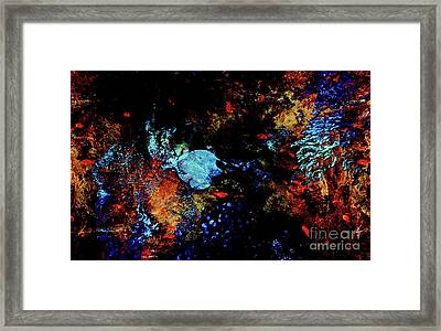 Butterflyfish Abstract Framed Print
