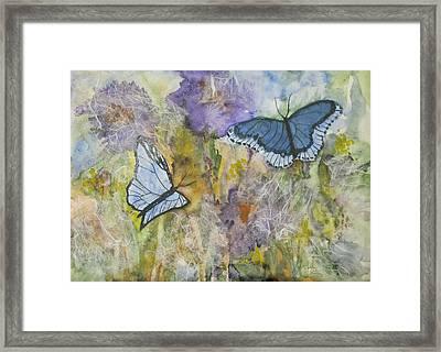 Butterflys On Color Framed Print