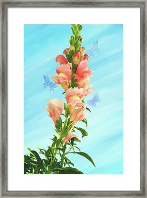 Butterfly Dance Framed Print by Kathryn Stone