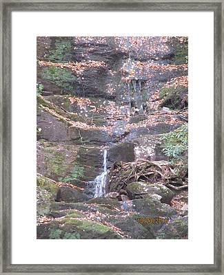 Buttermilk Falls Framed Print by Lisa Biczi