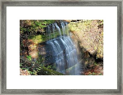 Buttermilk Falls Natural Area Framed Print by Shelley Smith