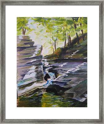 Buttermilk Falls Framed Print by Sandy Ransom