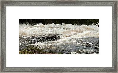 Buttermilk Falls Froth Framed Print by Carol Lynn Coronios