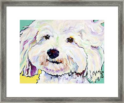 Buttons    Framed Print by Pat Saunders-White