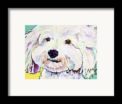 Poodle Framed Prints