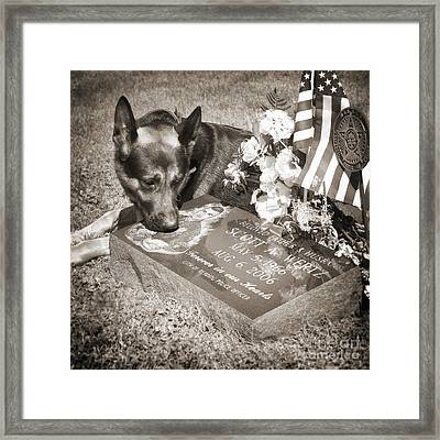 Buy A Print. Show Your Support For Reading K9 Police.  Willow Street Pictures.  Framed Print