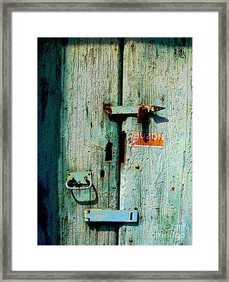 Buzon By Michael Fitzpatrick Framed Print by Mexicolors Art Photography