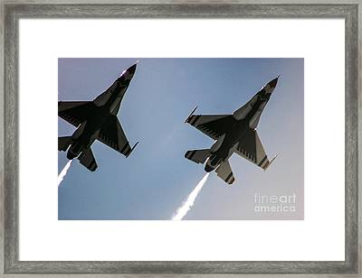 Buzz The Crowd Framed Print