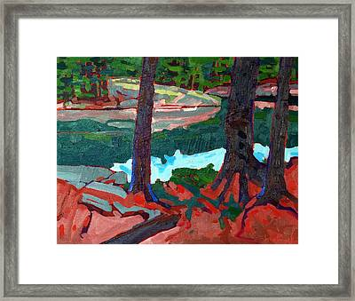 Buzzard Island Pines Framed Print by Phil Chadwick
