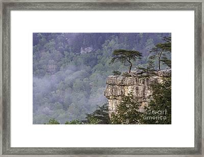 Buzzards Perch Framed Print by Anthony Heflin