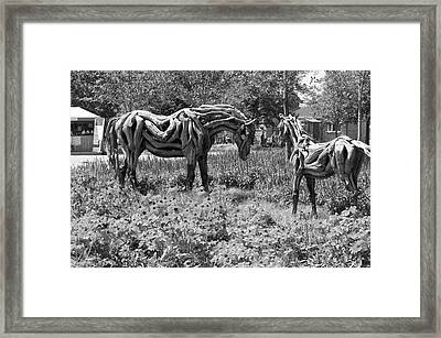 Bw Of Odyssey The Horse And Hope The Colt Sculptures Made Of Driftwood Framed Print