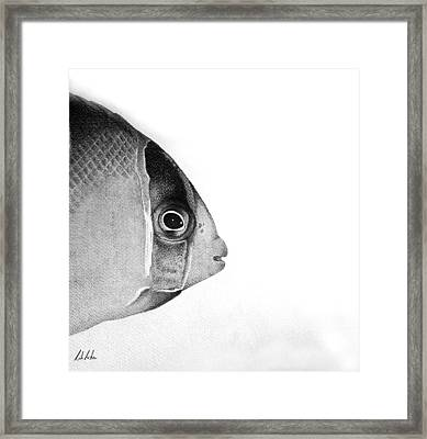 Framed Print featuring the drawing Bw Tricolor by Rita Silva