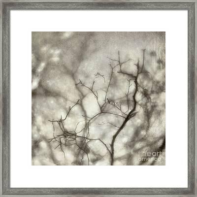 bw1 Framed Print