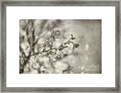bw2 Framed Print