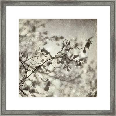 bw3 Framed Print