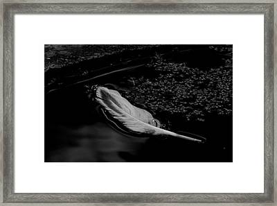 Grace - Bw Framed Print by Marilyn Wilson