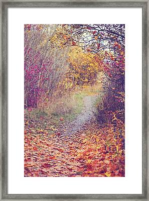 By Autumn Path 1 Framed Print by Jenny Rainbow