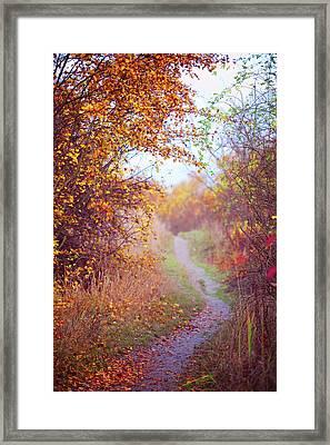 By Autumn Path 2 Framed Print
