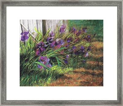 By The Barn Framed Print