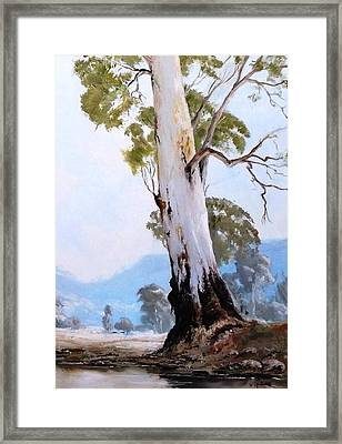 By The Creek Framed Print by Diko