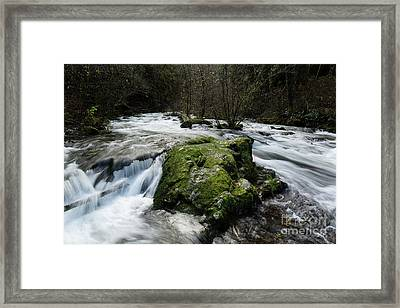By The Creek Framed Print