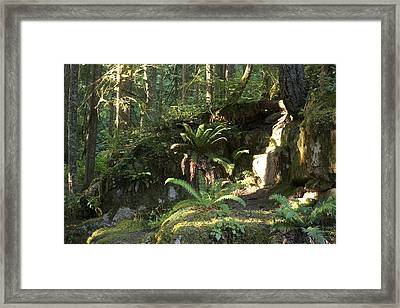 By The Falls Framed Print by Larry Darnell