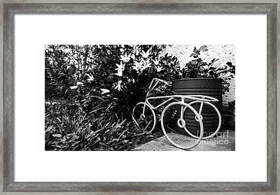 By The Flower Garden. Framed Print