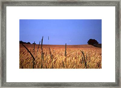 By The Highway 2 Framed Print by Lyle Crump