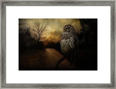By The Light Of The Full Moon Owl Art Framed Print