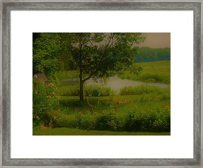 By The Little River Framed Print