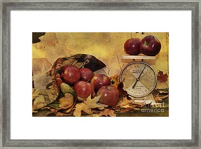 By The Pound Framed Print by Kathy Jennings