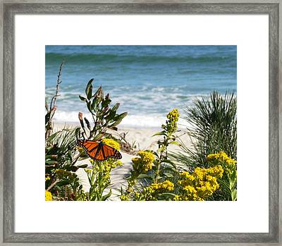 By The Sea Framed Print by Tom LoPresti