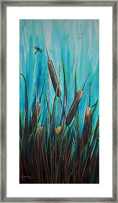 By The Shore Cat -tail Framed Print by Yvonne Kinney