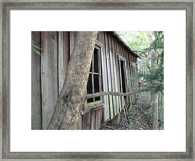 By The Side Of The Road Framed Print by Terry  Wiley