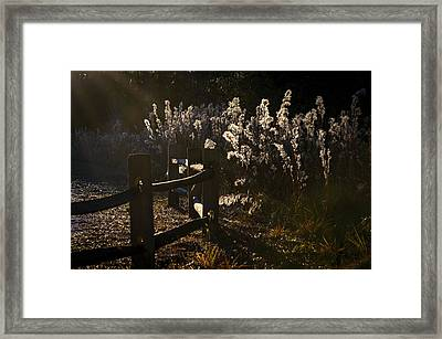 Framed Print featuring the photograph By The Way by Steven Sparks
