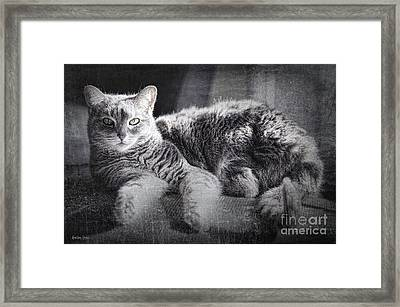 By The Window Framed Print by Korrine Holt
