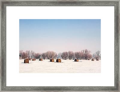 Bygone Bales Framed Print by Todd Klassy