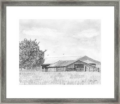 Byhalia Road Farm - Drawing Framed Print