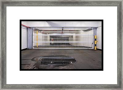 C1211-2017 Framed Print