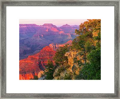 Canyon Allure Framed Print by Mikes Nature