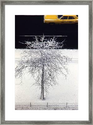 Cab On Broadway Framed Print