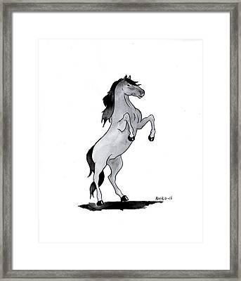 Caballo Framed Print by Edwin Alverio