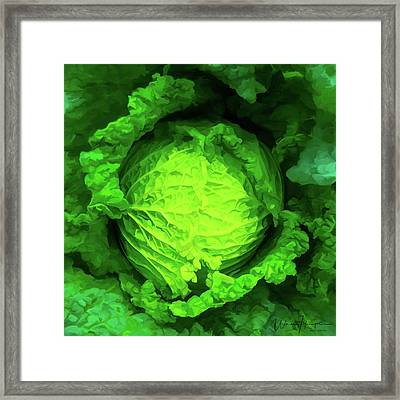 Cabbage 02 Framed Print by Wally Hampton