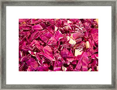 Cabbage 639 Framed Print