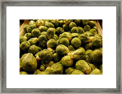 Cabbage Family Framed Print by Sonja Anderson