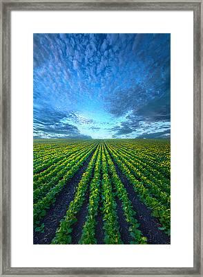 Cabbage Forever Framed Print