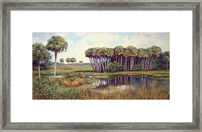 Cabbage Palm Hammock Framed Print by Laurie Hein